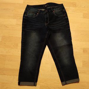 Cato Ankle Pants Size 12